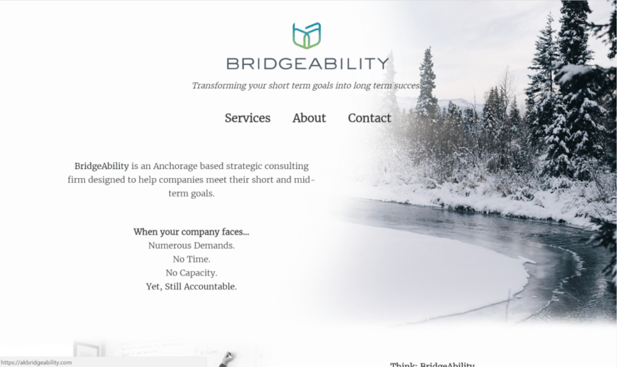 Screenshot of BridgeAbility website